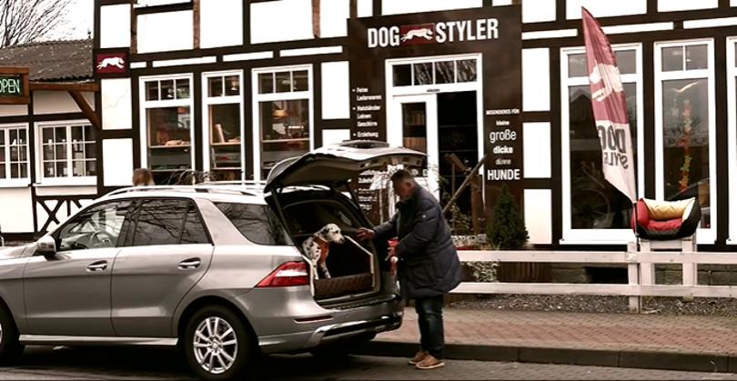 """Harry Wijnvoord – DOGSTYLER – """"Das DOG AUTOBETT"""""""