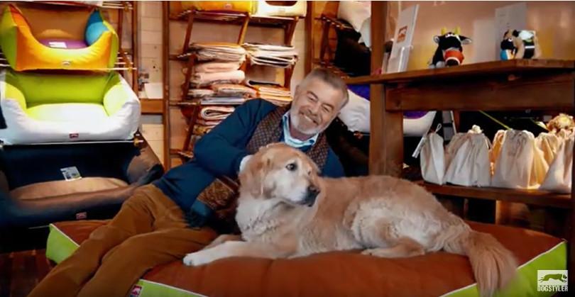 """Harry Wijnvoord – DOGSTYLER – """"Weg vom Discount - hin zu Liebe und Leidenschaft."""""""