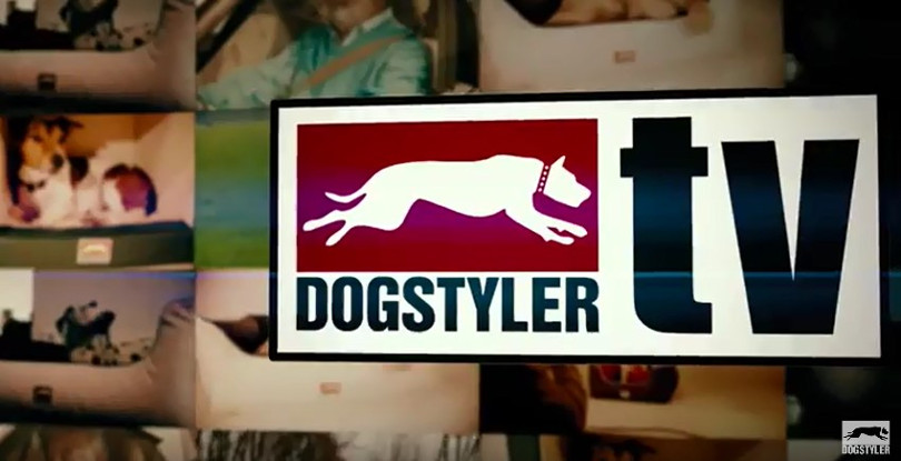 "Harry Wijnvoord – DOGSTYLER – ""DOGSTYLER.TV 